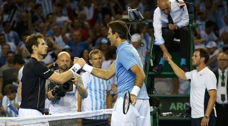 """Del Potro sinks Murray to give Argentina 1-0 lead""的图片搜索结果"
